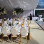 Glamour krzesła wypożyczalnia